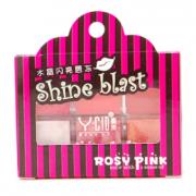 YCID Lip Shine Blast out package